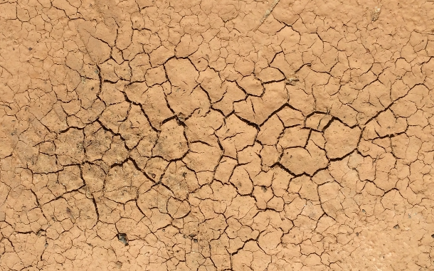 As a volume of mud dries, its internal tension grows until it suddenly cracks hierarchically, meaning with a few large cracks along with many small ones. A similar process is responsible for the wide variety of sizes that celestial bodies come in, according to a Duke professor.